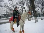 кони и пони
